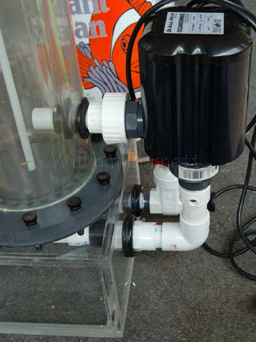 Recirculating pump on needle wheel protein skimmer